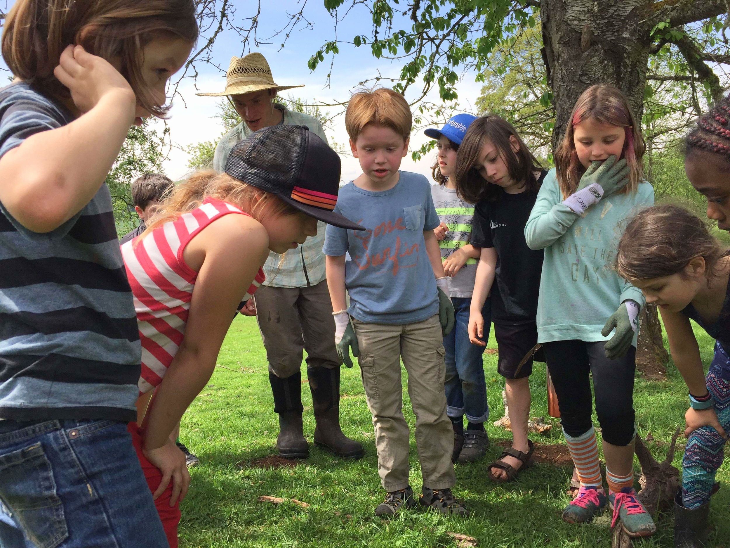 Waldorf Kids Farm Life Experience