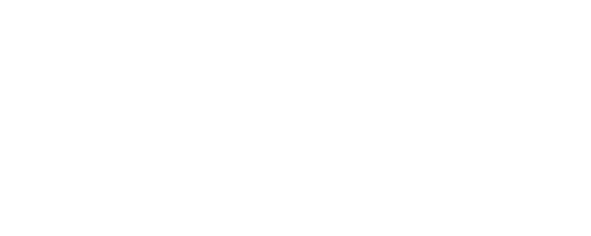 WCF17_Sponsor_Logo-White_Suntrust_650px.png