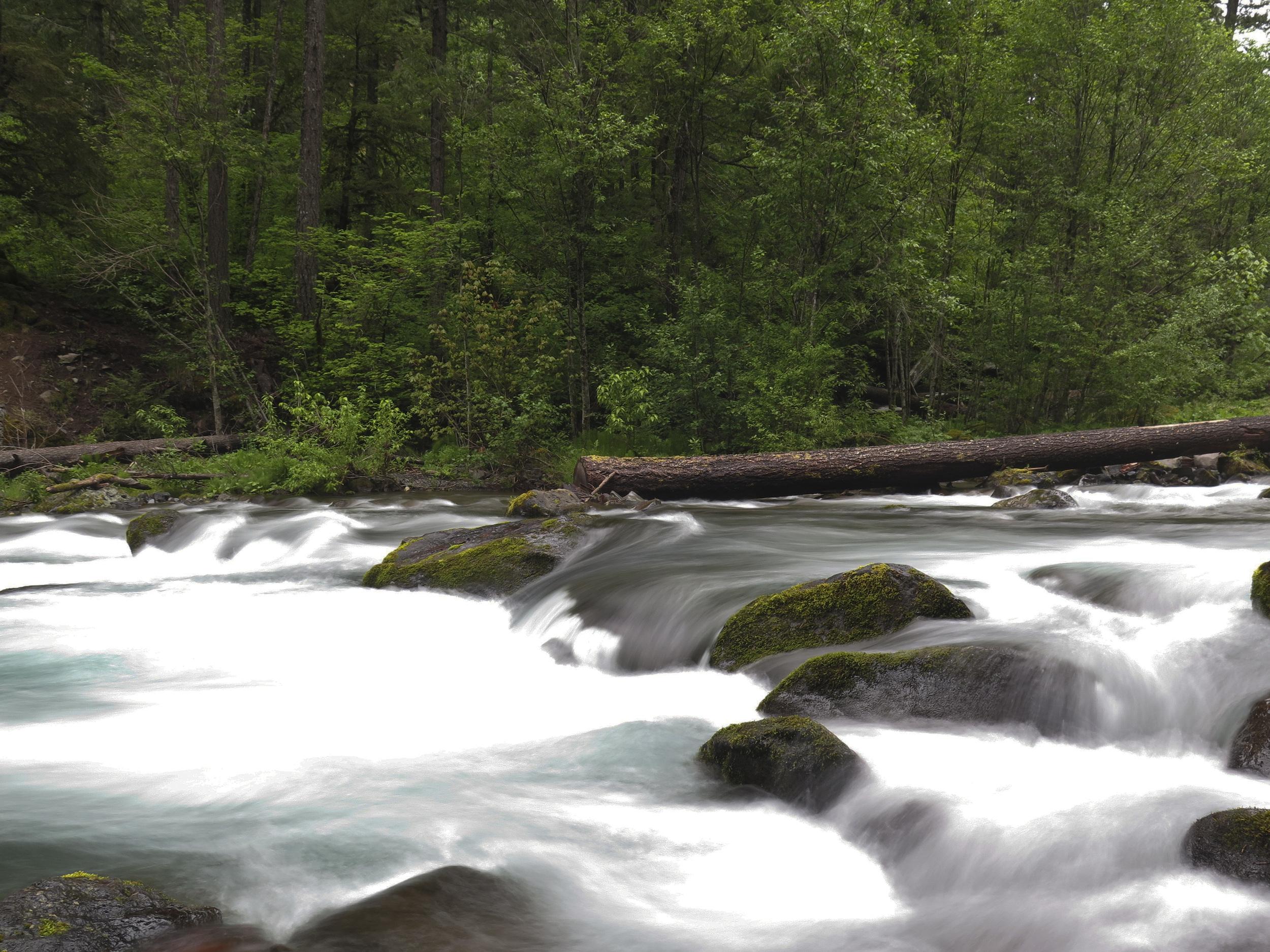 Umpqua River, Oregon