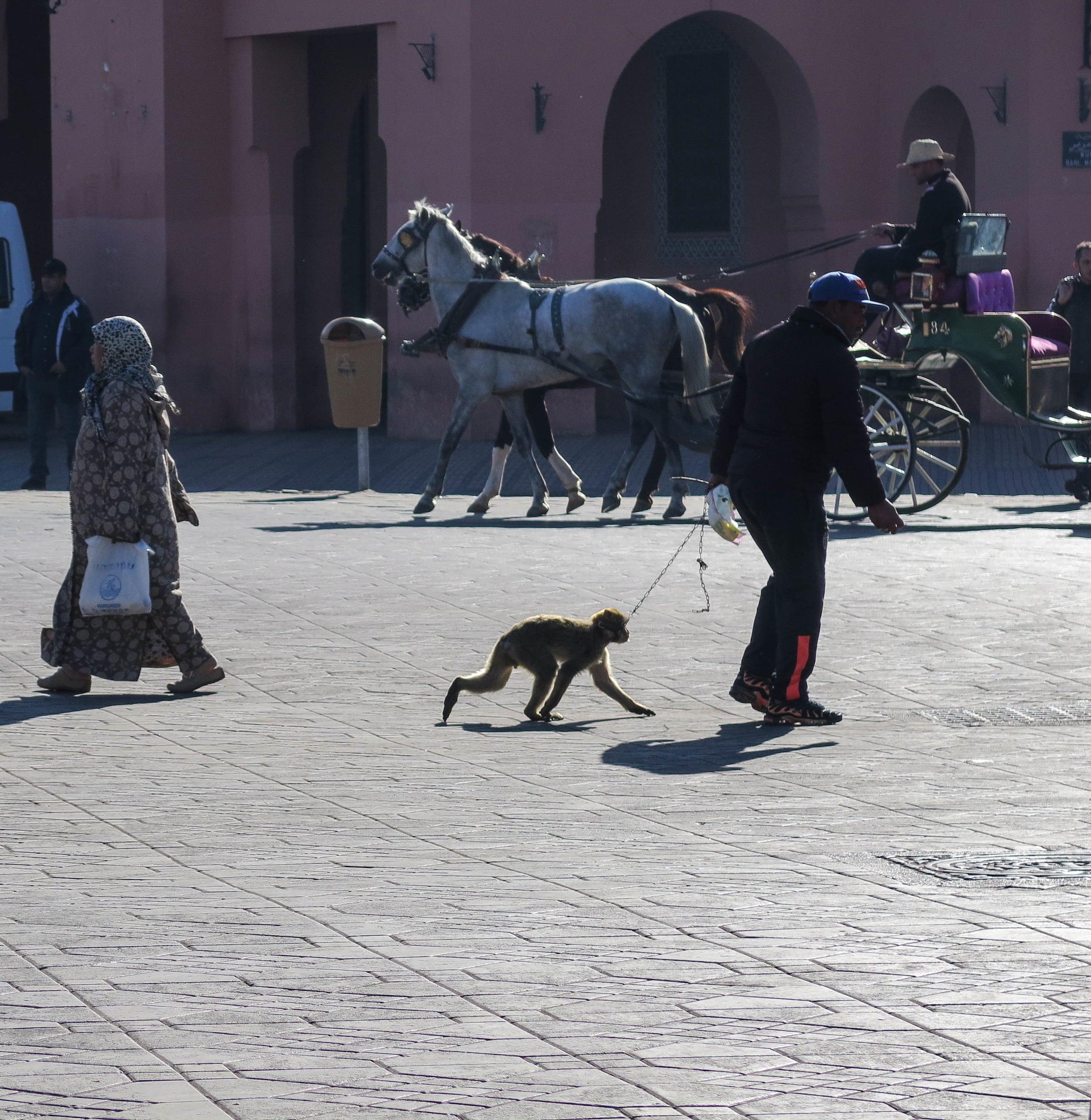 Morocco_Blog_Edit-13.jpg