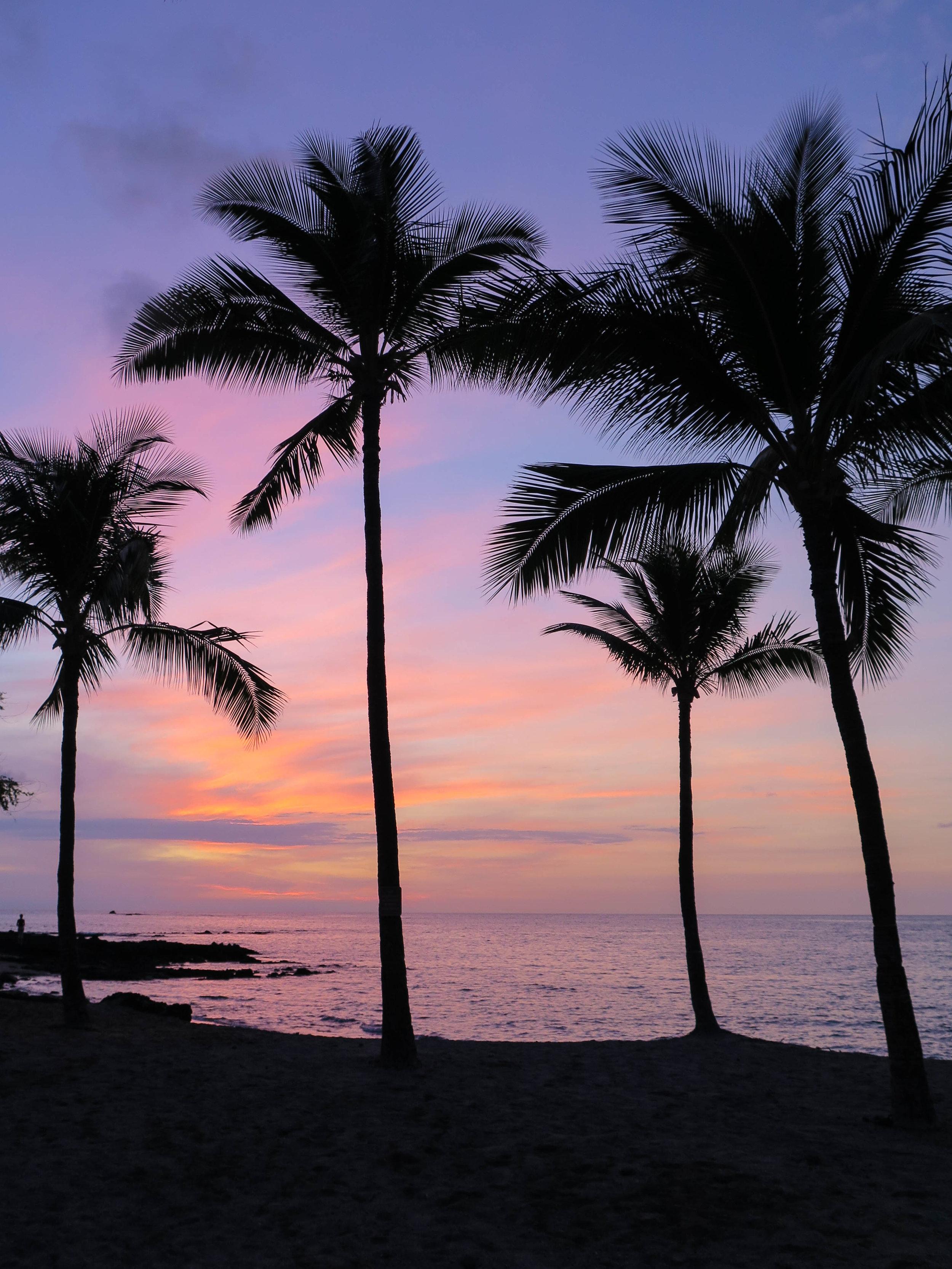 GoPro_Hawaii_2017-48.jpg