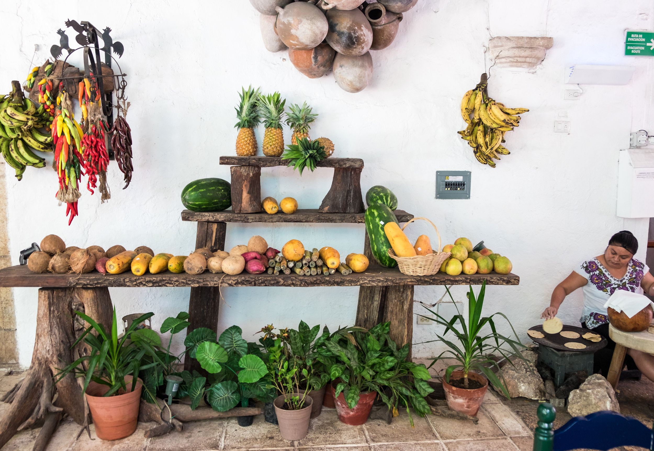 Fresh ingredients and handmade tortillas at Hotel El Mesón del Marqués