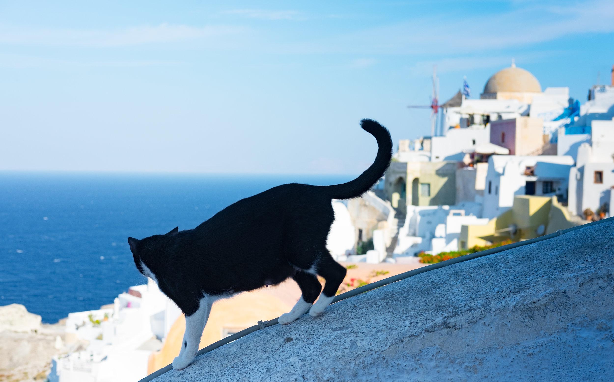 Greece_2018-11.jpg