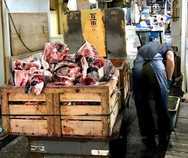 Tuna carcasses at Tsukiji