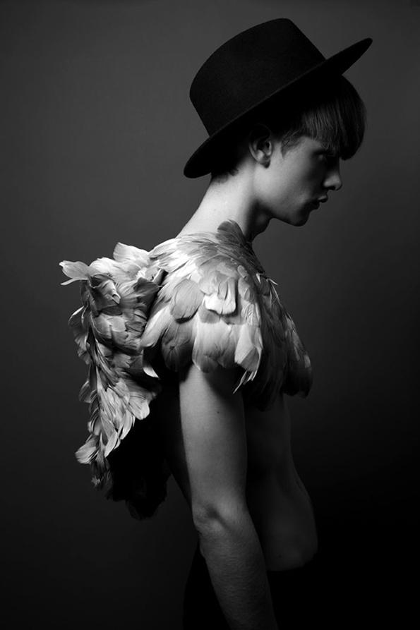 feathers_1.jpg