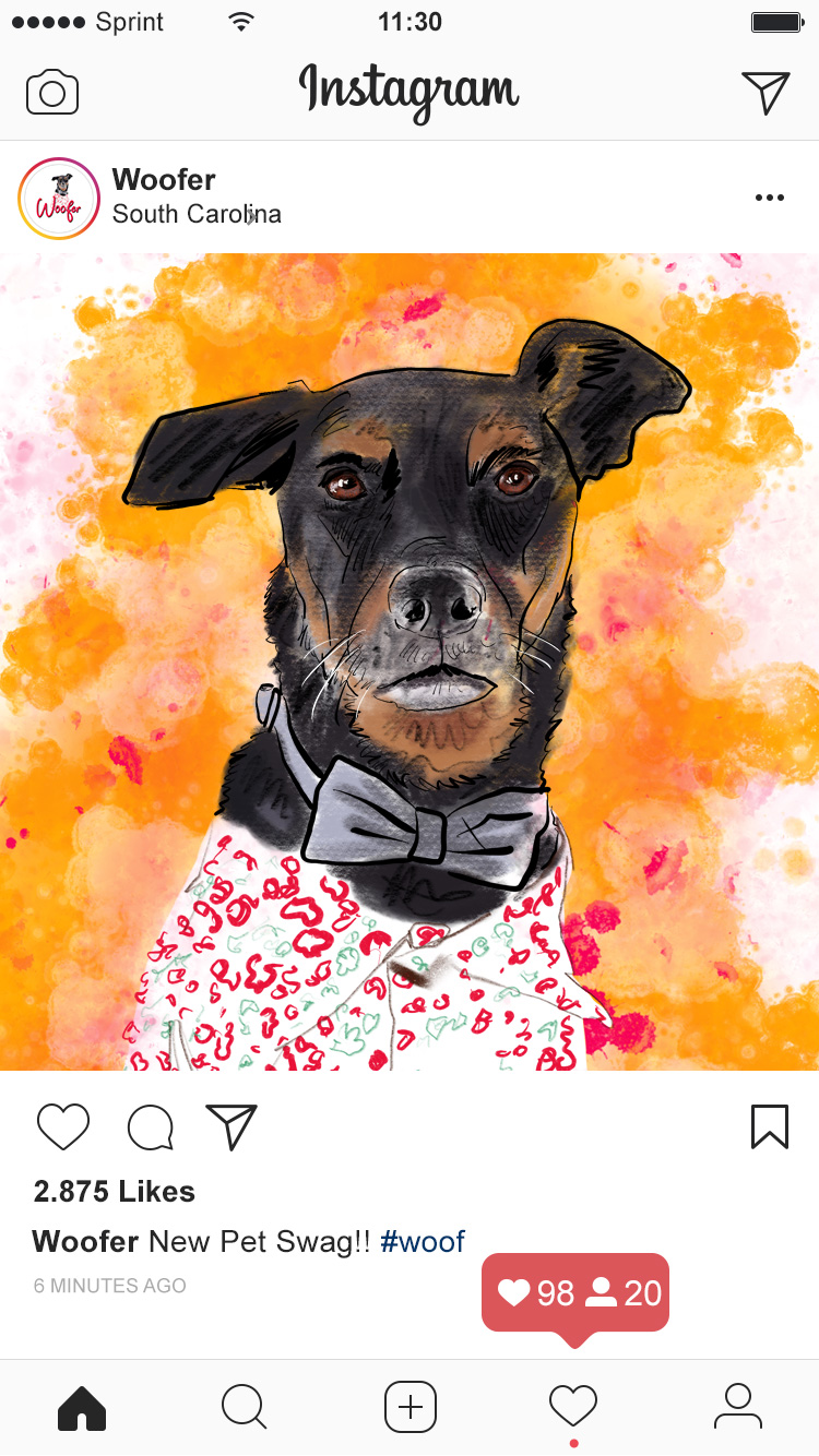 Pet Brand Instagram Graphic