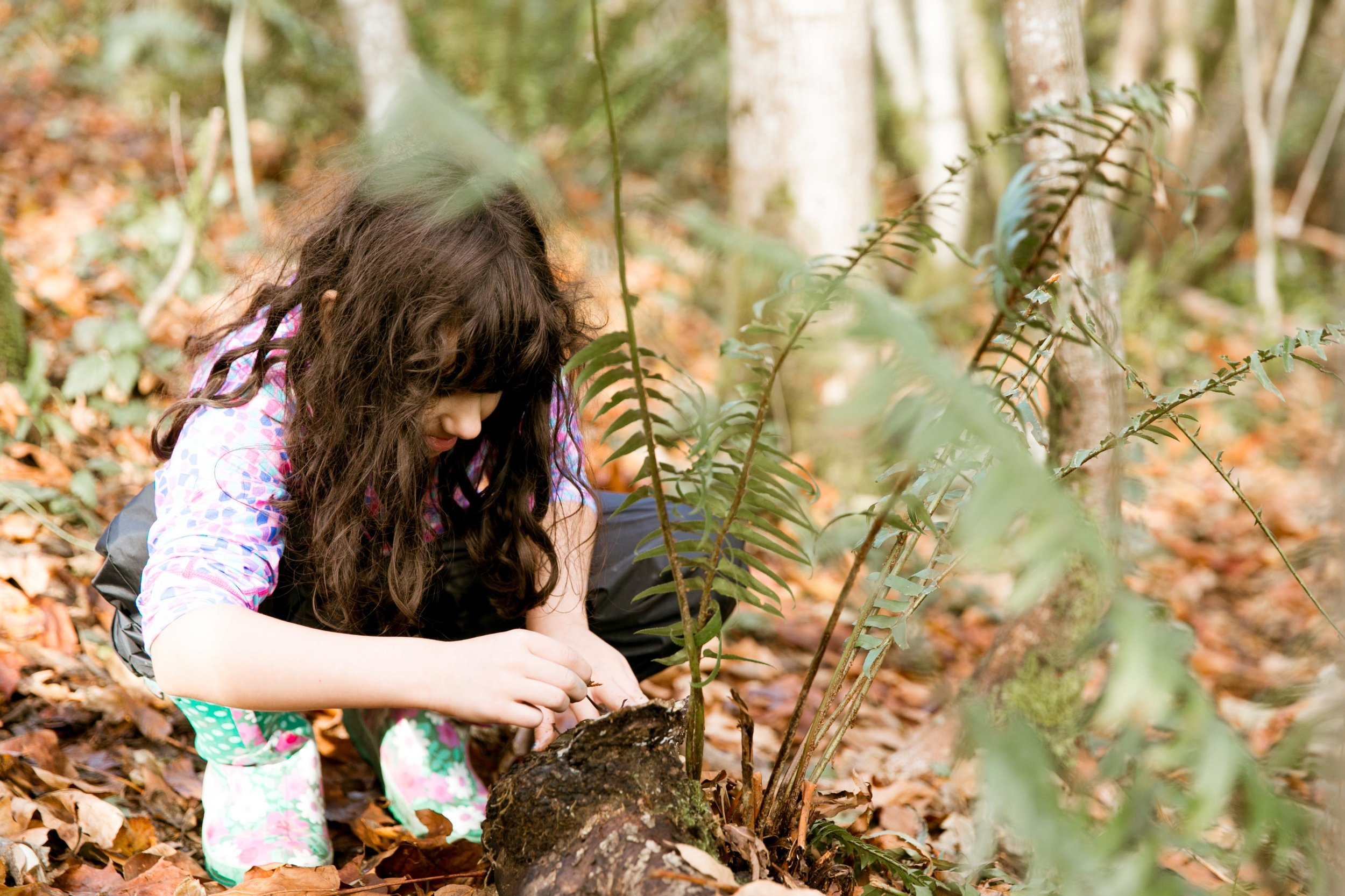 - Natural ScienceWhen children's authentic curiosity leads to their own experiential nature observations and discoveries, it encourages scientific experimentation and conclusion; lessons are understood more fully and the information retained more deeply.