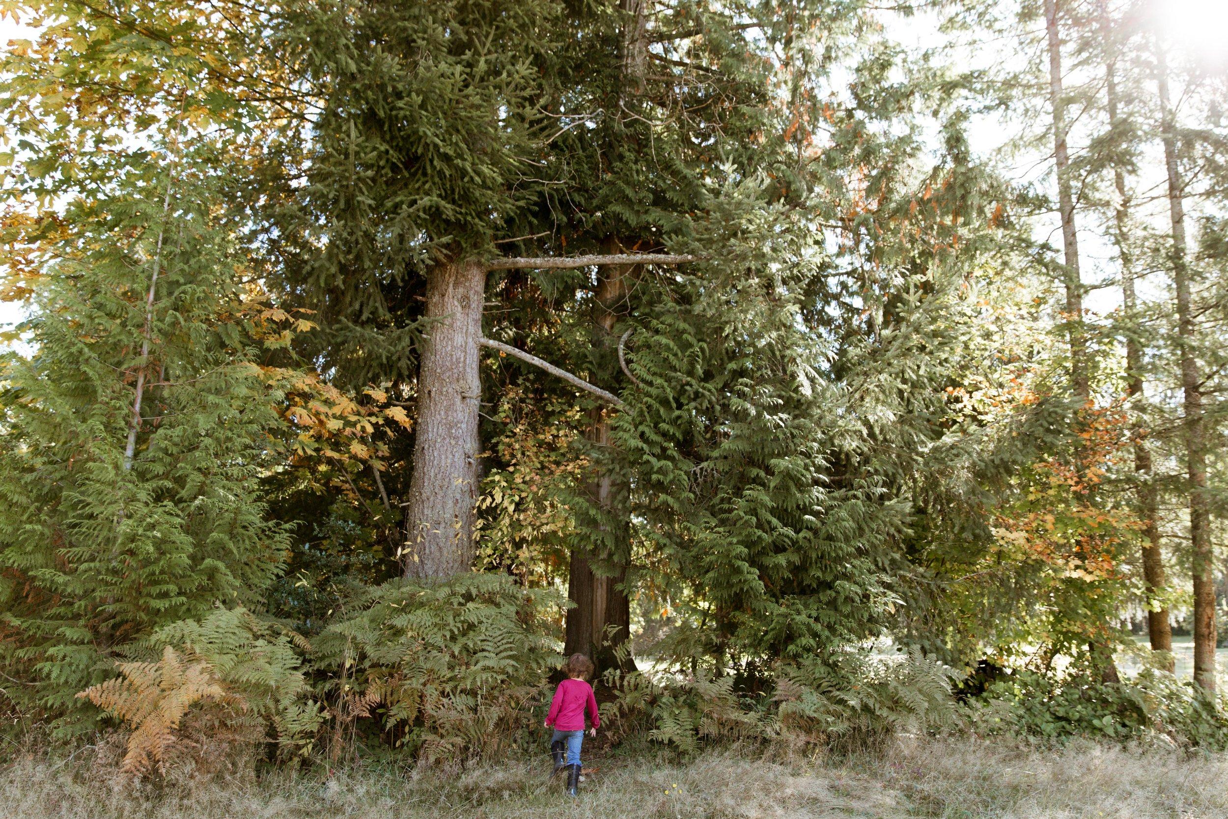 Sienna-Renee-Photography-Nature-Nuts-2879.jpg
