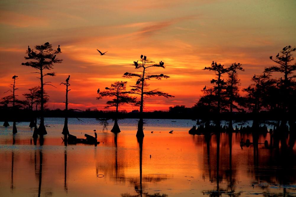 Sunset at Black Bayou Lake National Wildlife Refuge (http://baconbaron.com/)