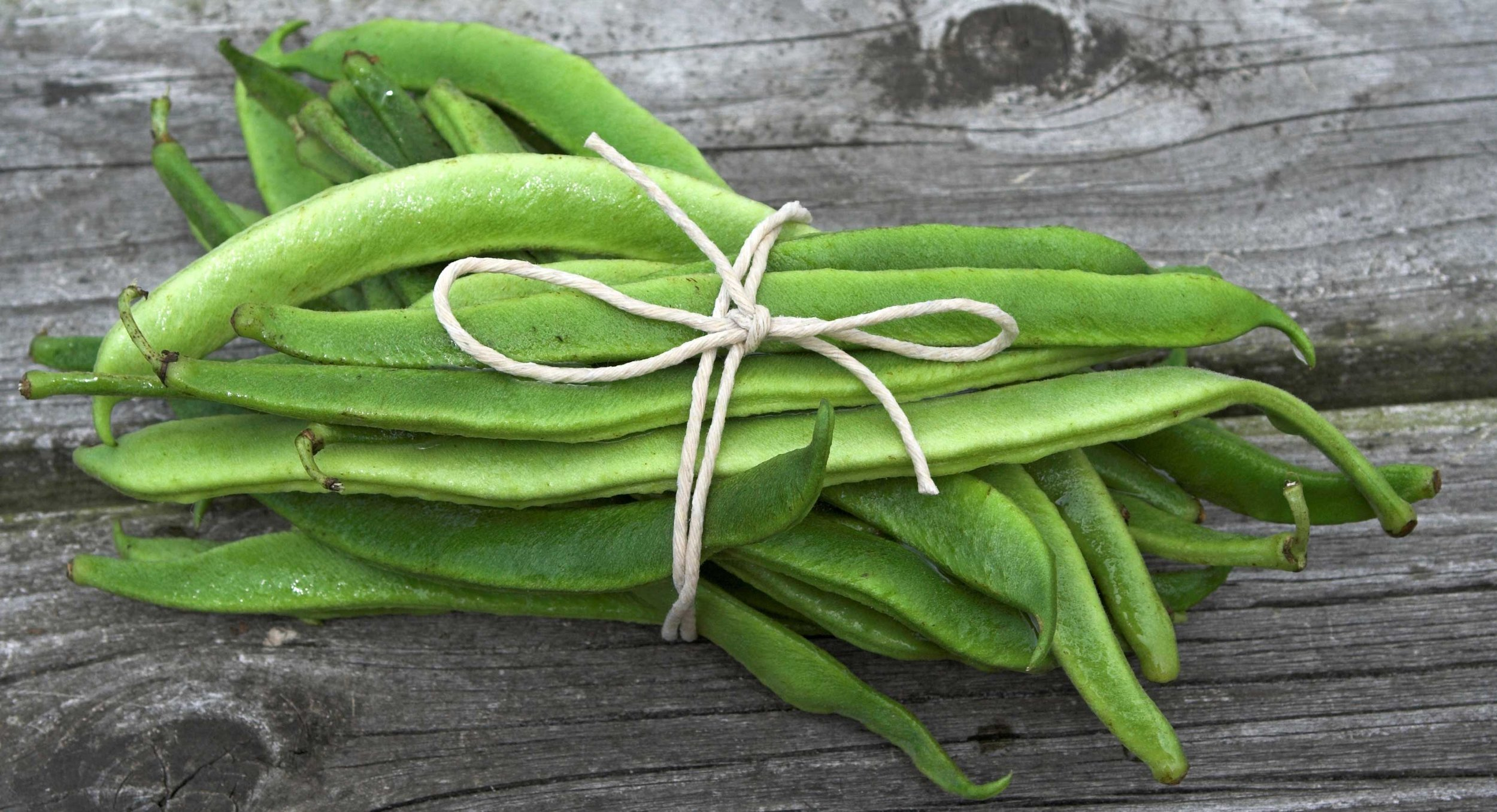 runner-bean-glossary-image.jpg