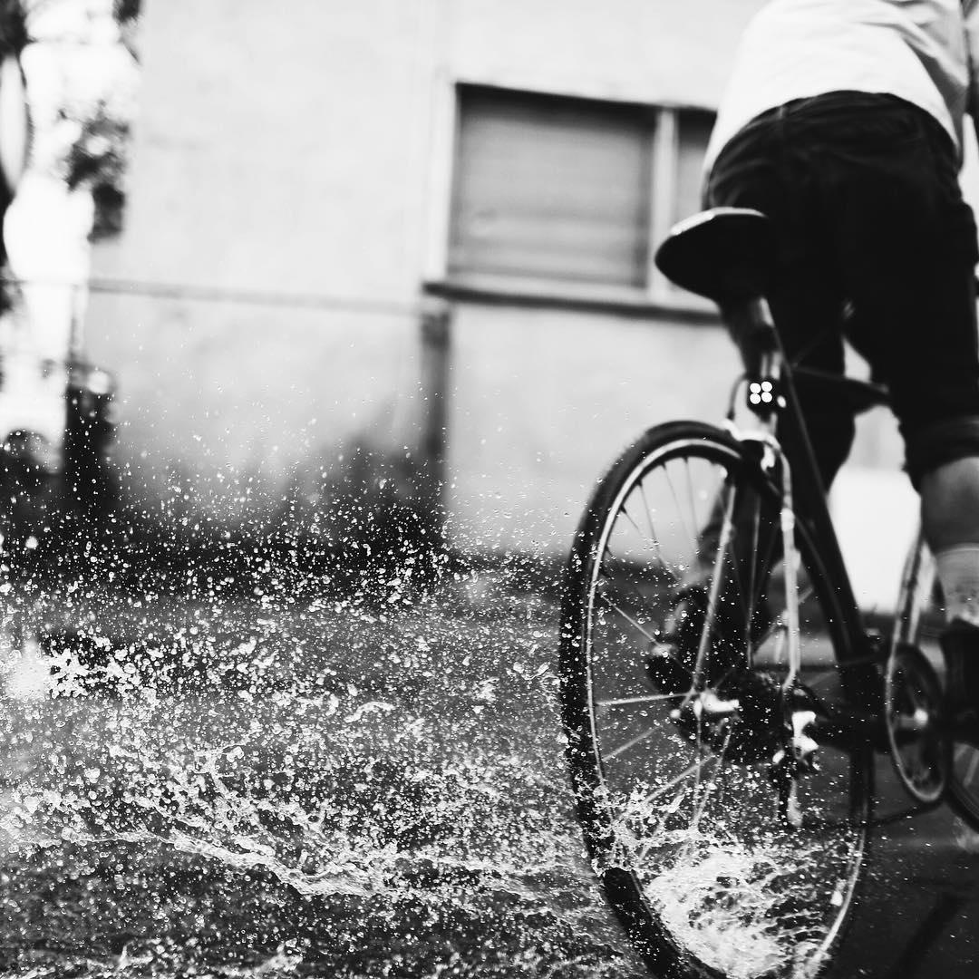 field guide bike.jpg