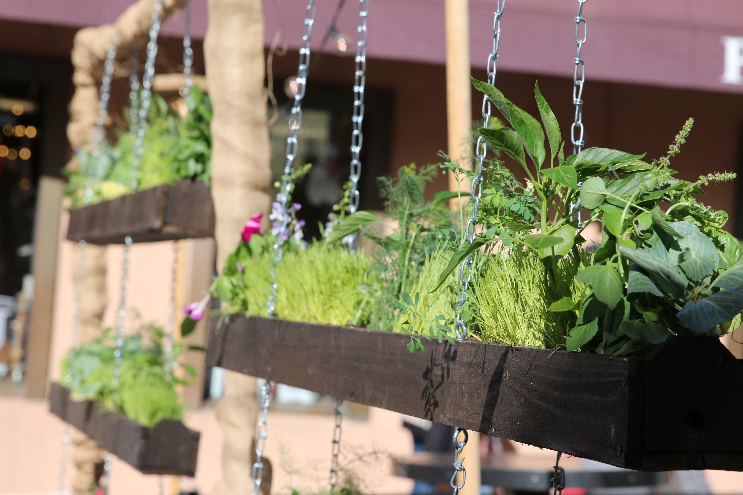 Bar Planters