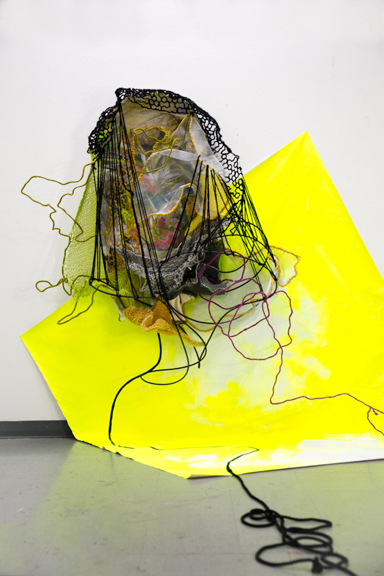 Assertion, 2014, Paint, yarn, wire, rubber tubing, aluminum screen, rope on canvas, 78 x 84 x 8 inches