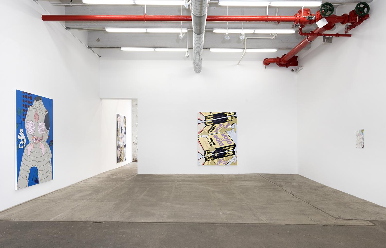 Installation view at Bortolami Gallery