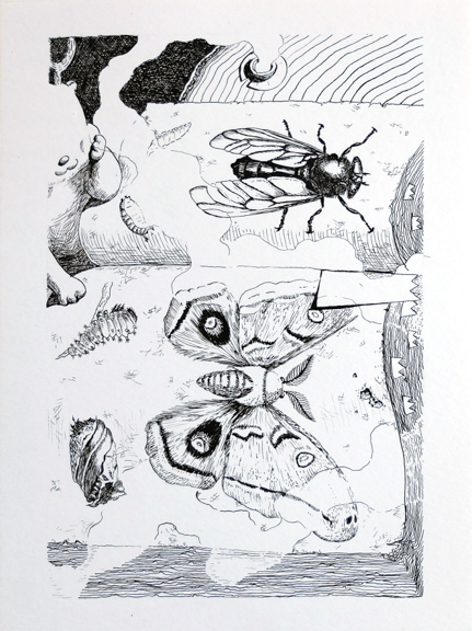 """I heard frogs croaking last night. Chapter 1. P.15 2016  Indian ink, paper 9"""" x 12"""""""
