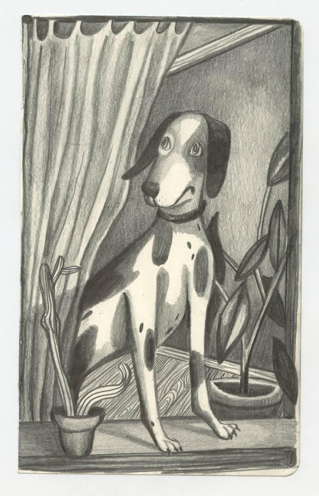 Dog in a Window , graphite on paper, 5 x 9