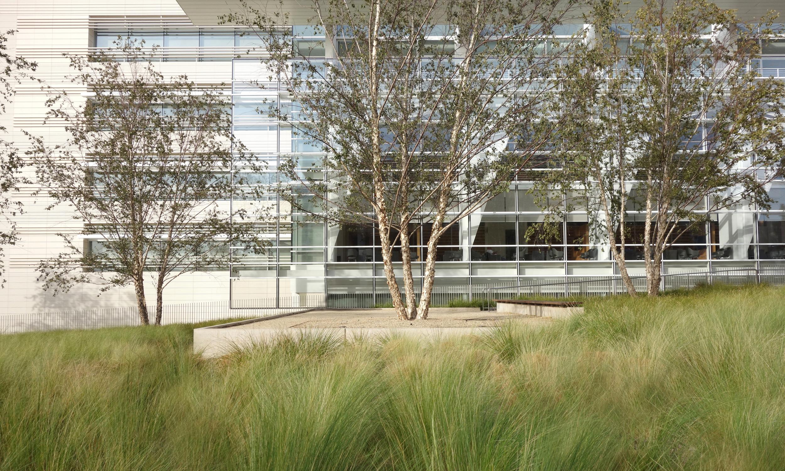 Edie & Lew Wasserman Building
