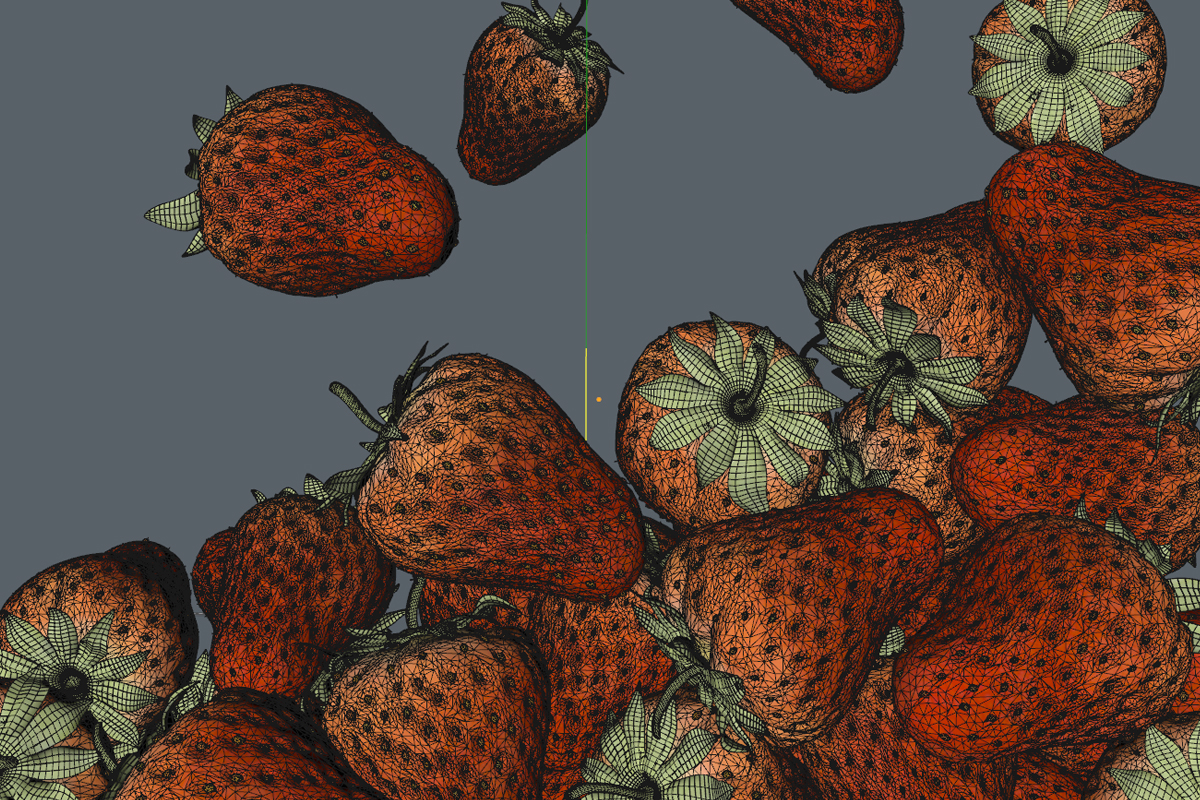 fragole0037_wireframe.jpg