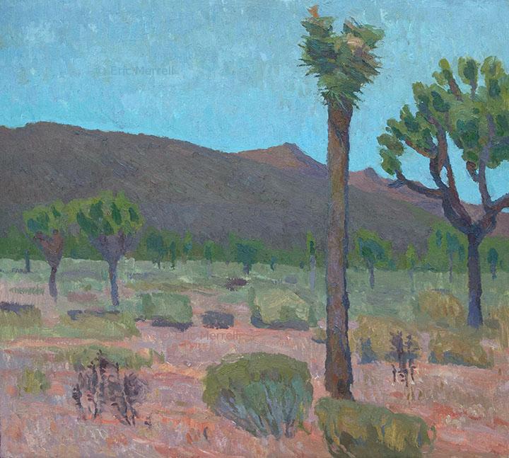 Shimmering Desert