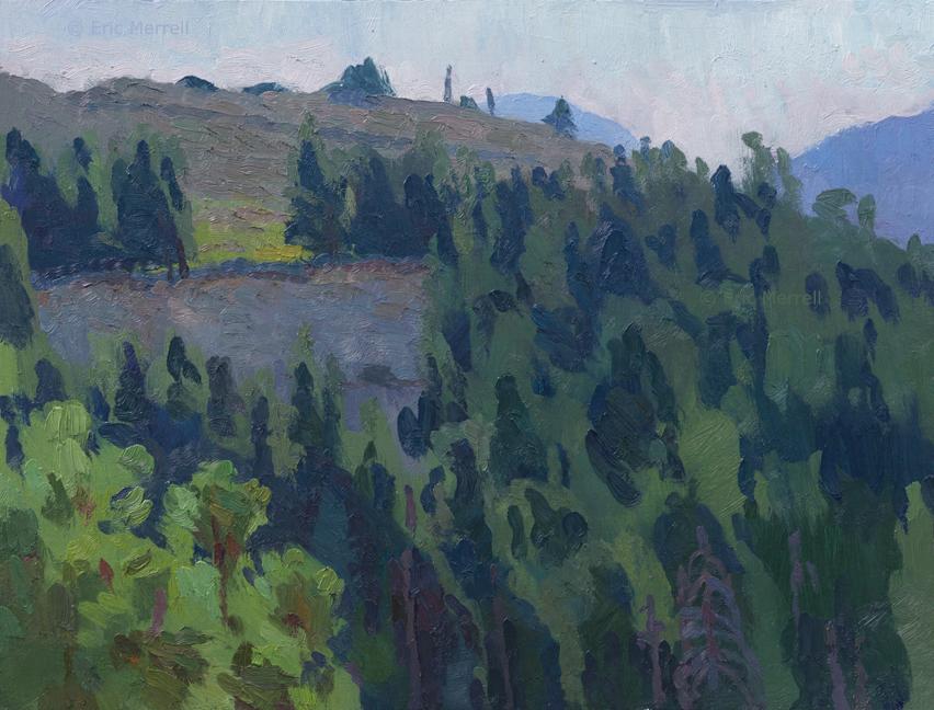 Verdant Hillsides