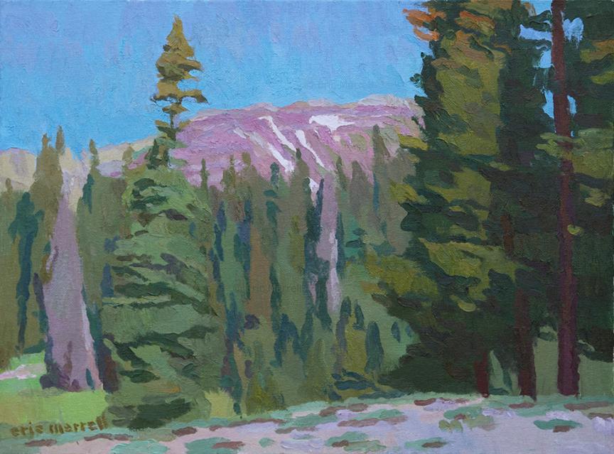 Snowmelt Near Ruby Peak (CO)