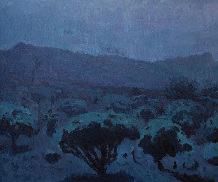 Dreaming Desert