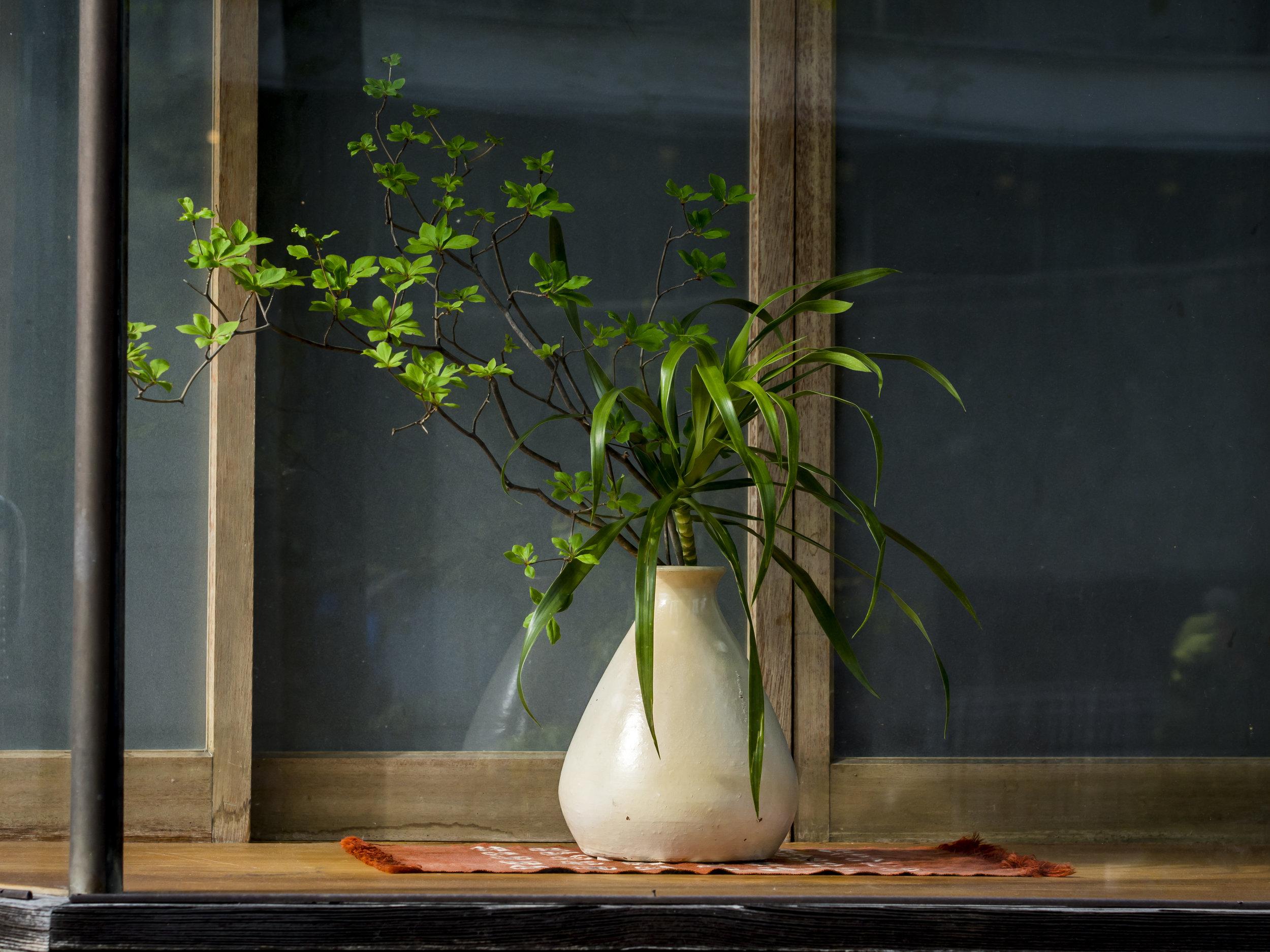 Kyoto shop window. EM5 45mm f5.6