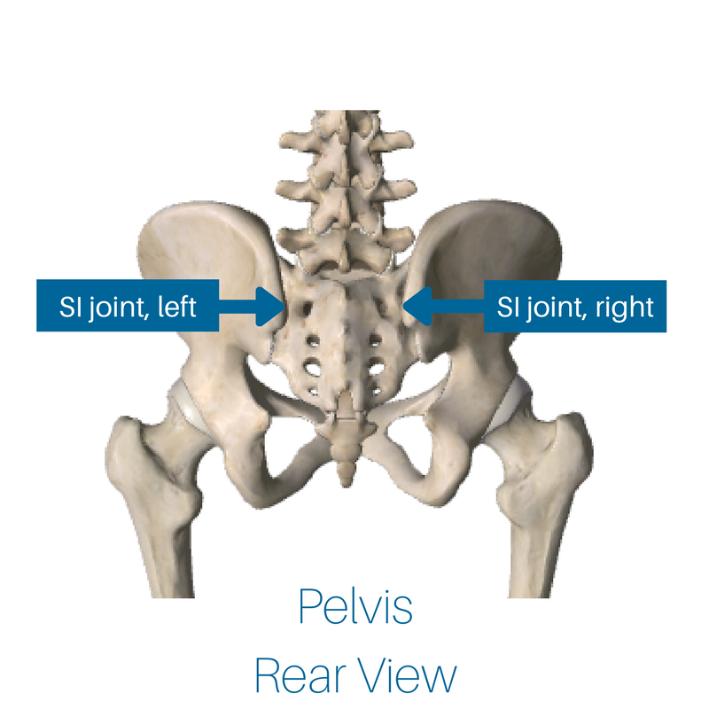 SI joint, front and back view (1).png