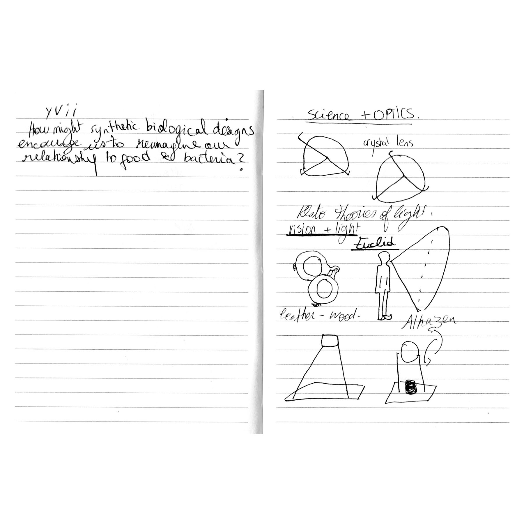 Optics2 copy.jpg