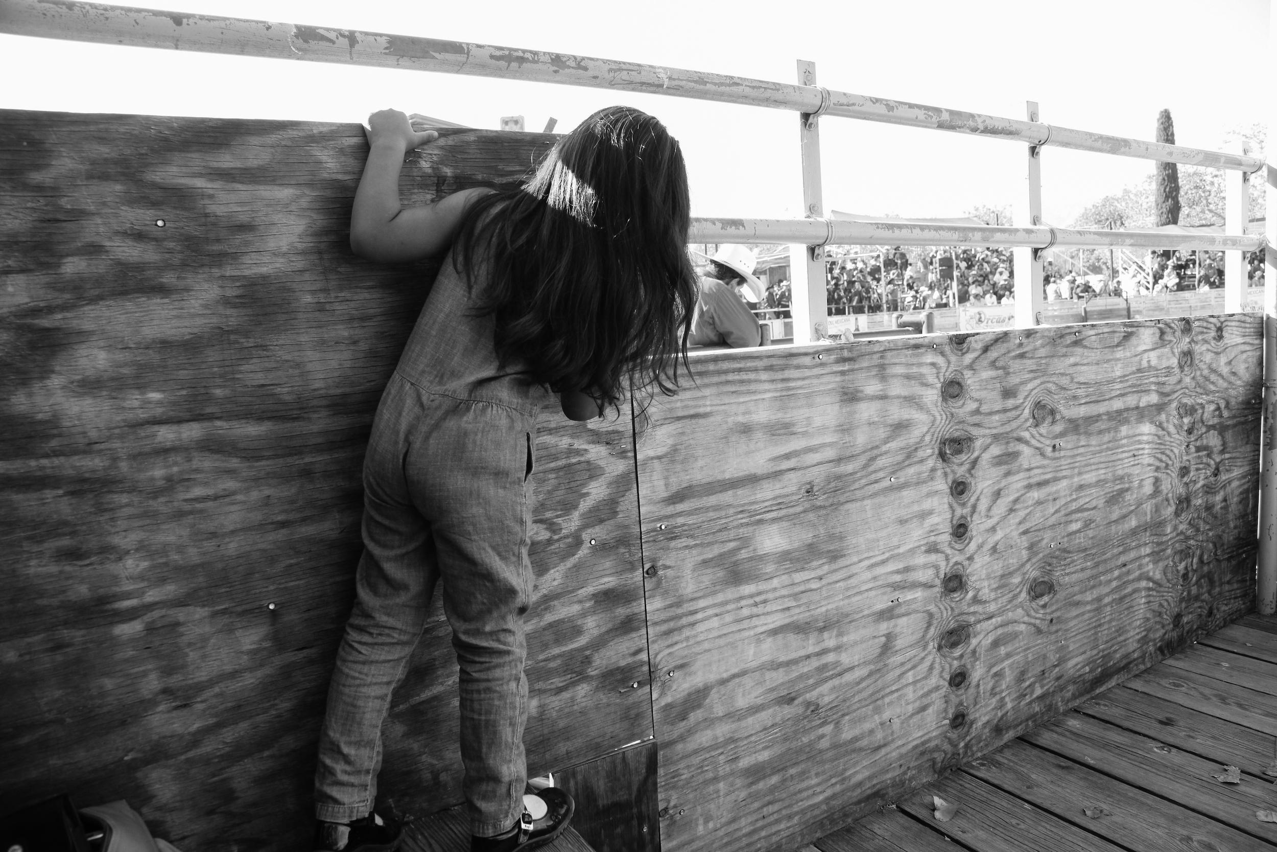 Rodeo | Diana Mantis