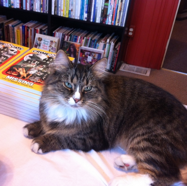 "Lucy guards new copies of ""Crime Cats: Missing"""