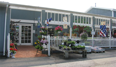 The-Blueberry-Plantation-front-entrance.jpg