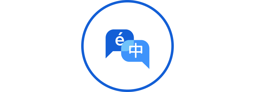 5 Major Languages  Our core product, Transform, is provided in five major languages… and counting