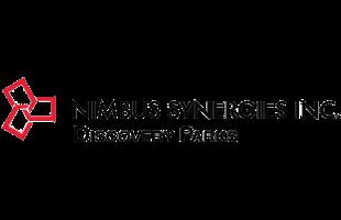 logo_nimbusSynergies.png