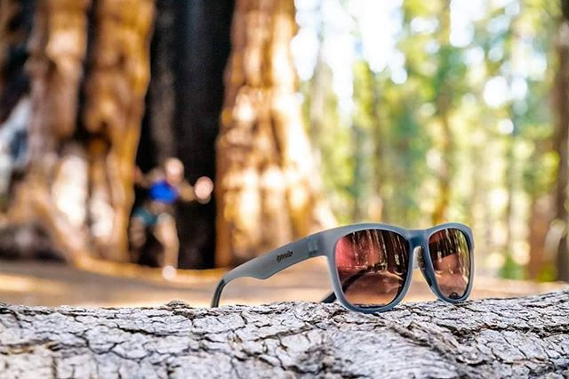Here's a little Friday fun for you all... a competition!  Do you want to win a pair of Goodr sunglasses? Thanks to the good folks at @goodr_aus_nz_ we've got eight pairs to give away across the season.  The Friday after each event, we want you to show us what a goodr time you had! Tag us in your pics from Rd 1 @ Enoggera Reservoir and we'll choose our favourite to win.  One winner will be crowned on Sunday evening (from Facebook and Insta combined), judges choices are final and your prize can be chosen from the goodr range at the next event in the Series that you attend.  Aaaaanddd... GO!