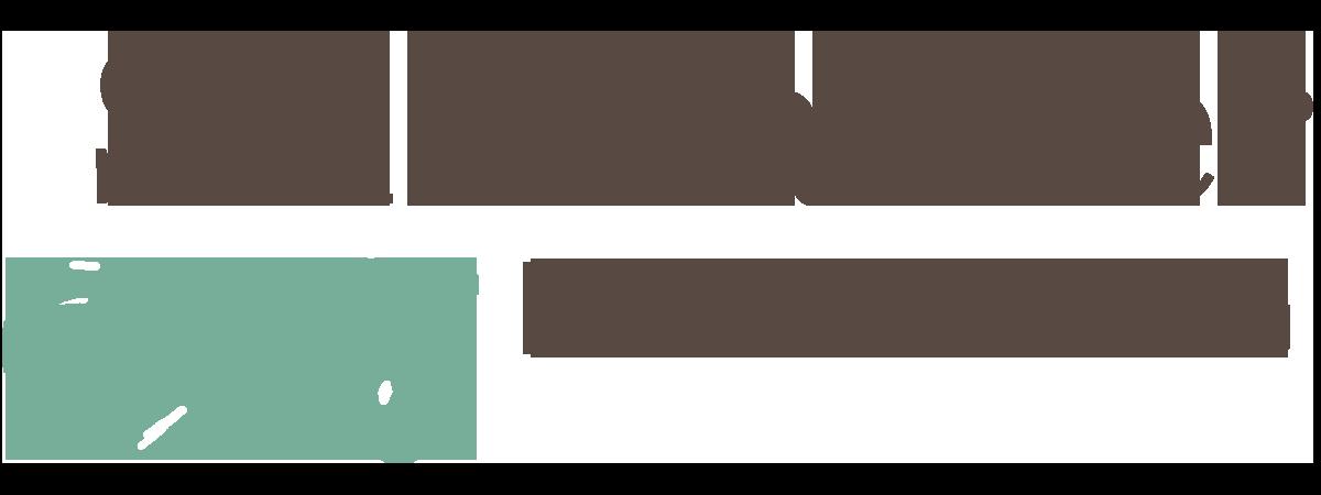Salamander Logo hi res.png