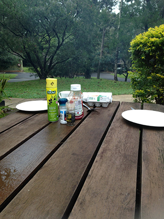 picnic_4.jpg