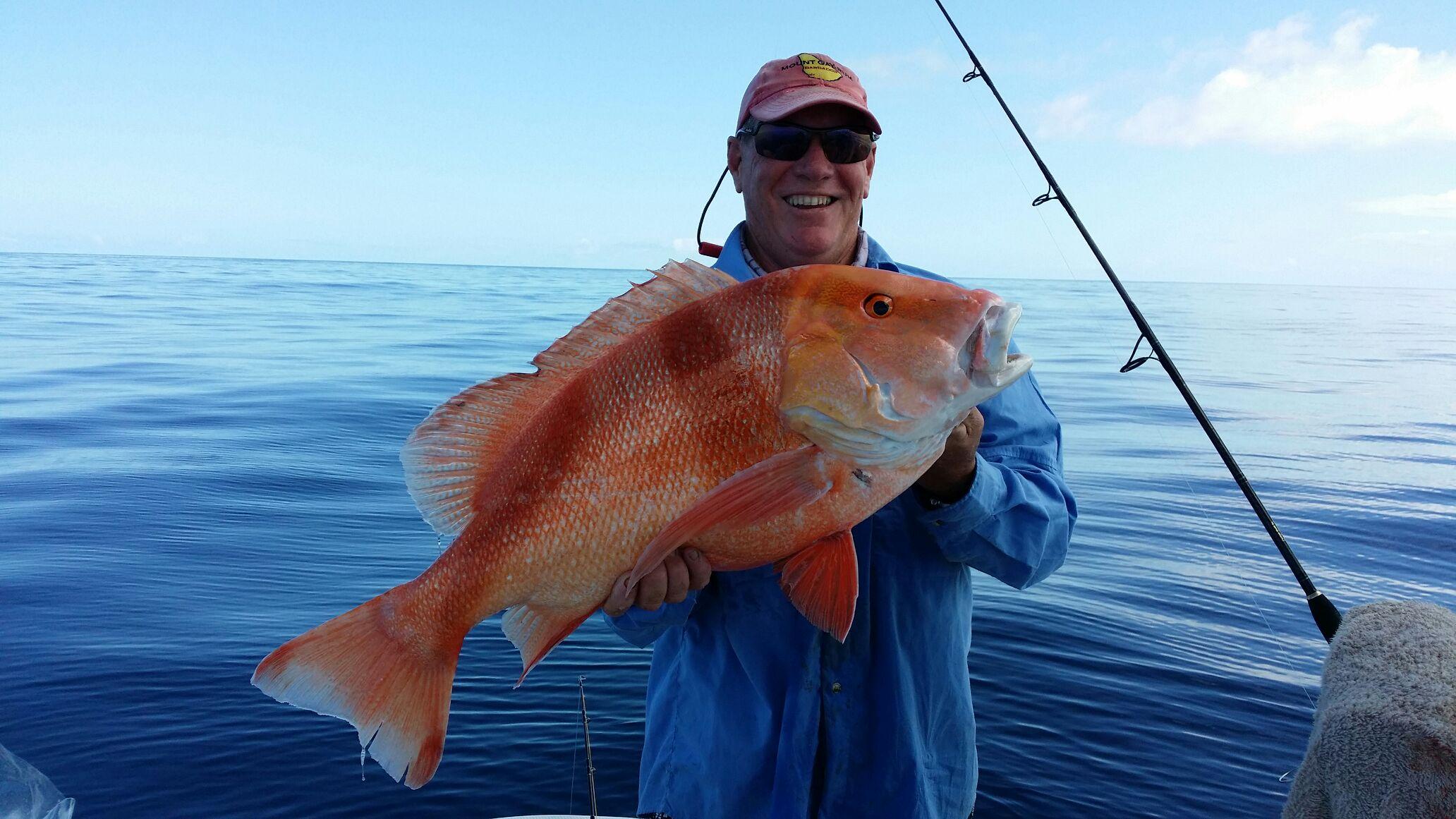reef reddy.jpg