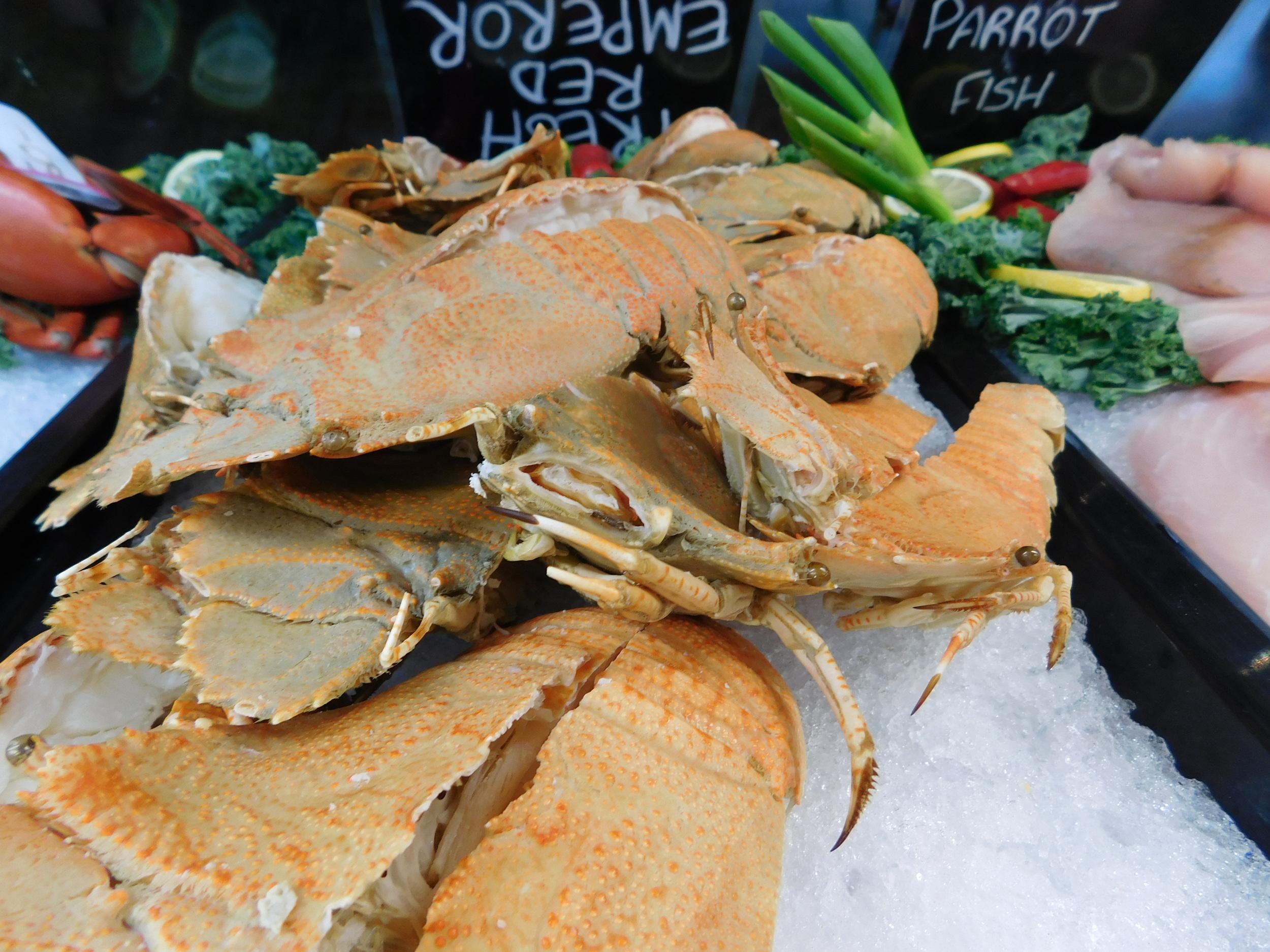 crabs 008.JPG