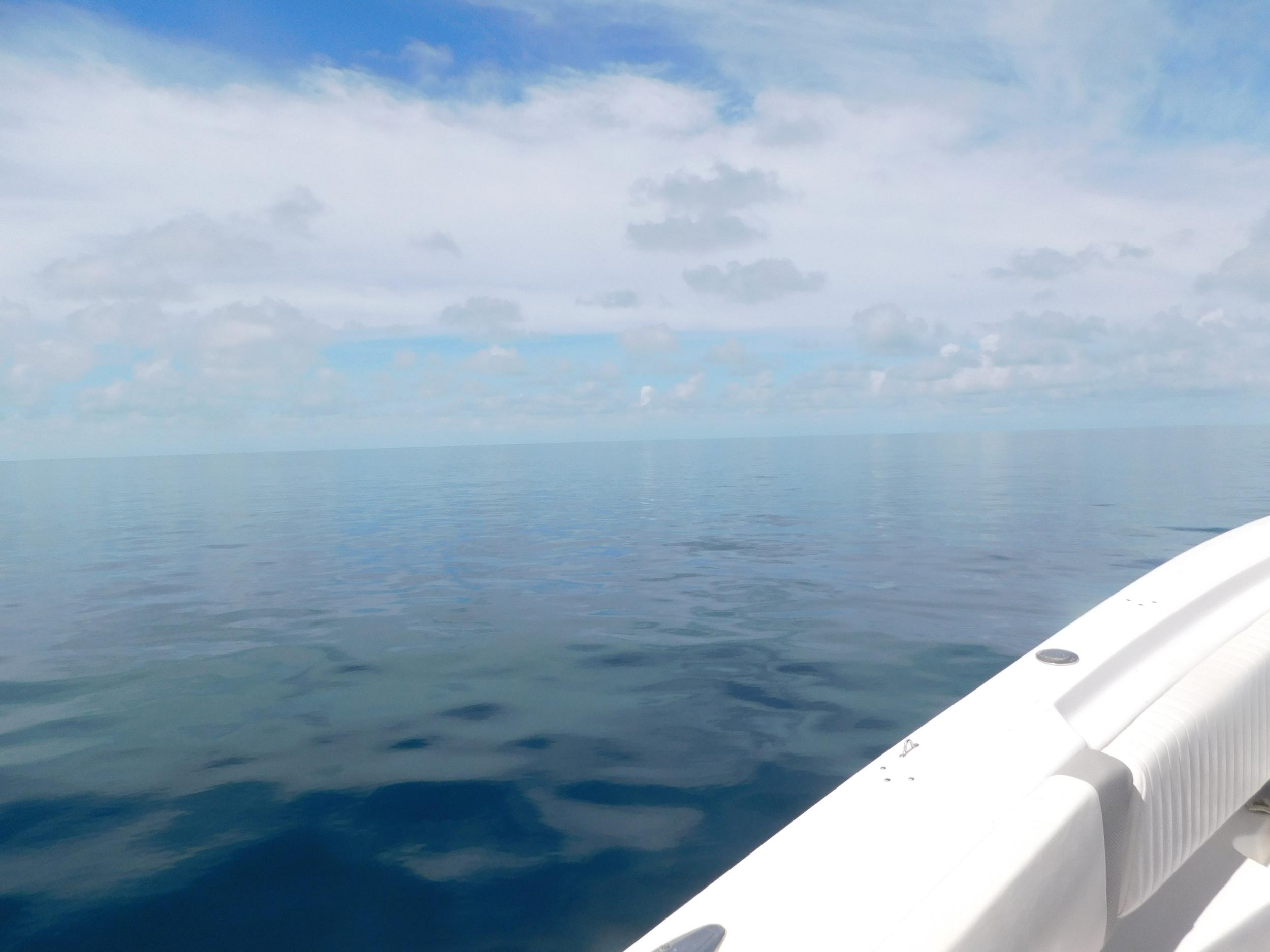 reef day 011.JPG