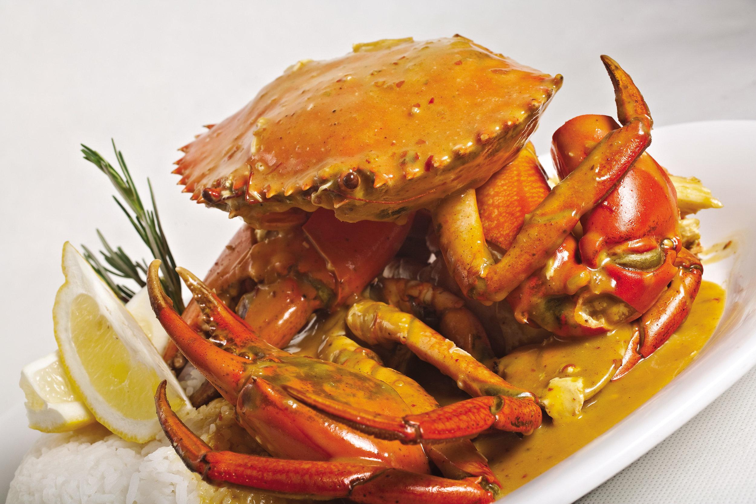 hero image crab.jpg