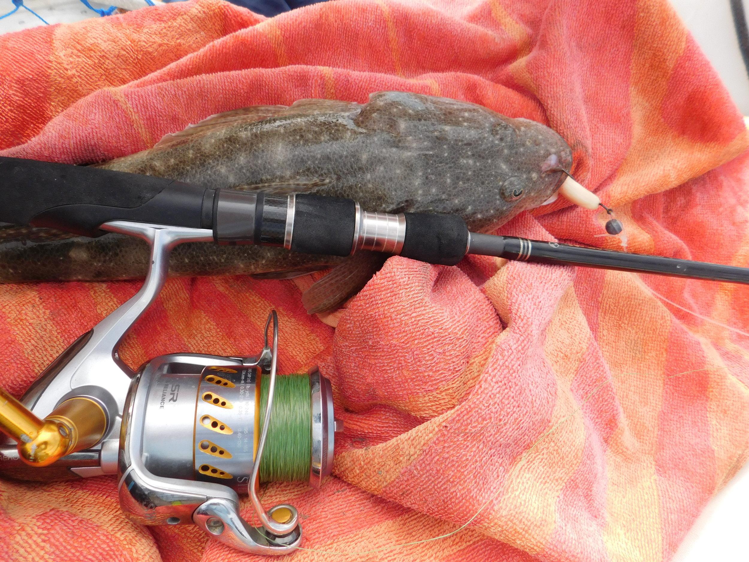 Flathead fish & Chips 001.JPG