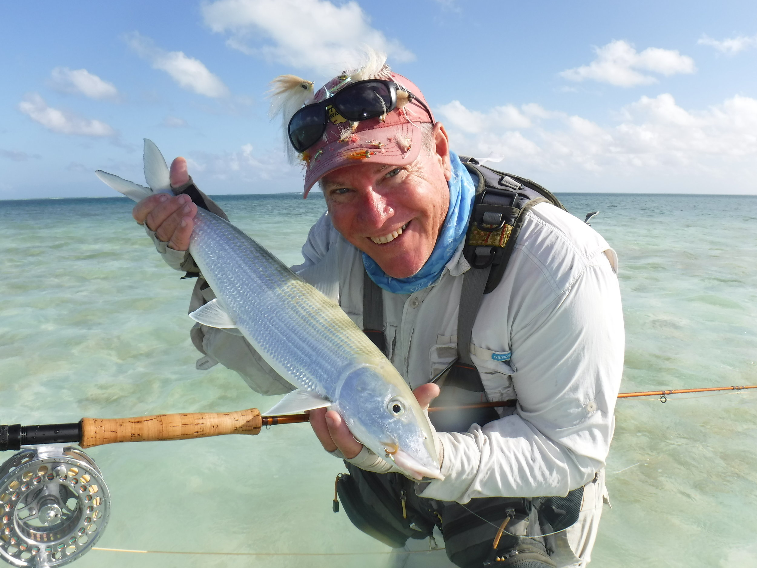 The fish it is all about. A Christmas Island Bonefish