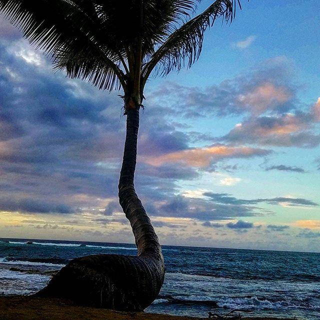 #hawaii #maui