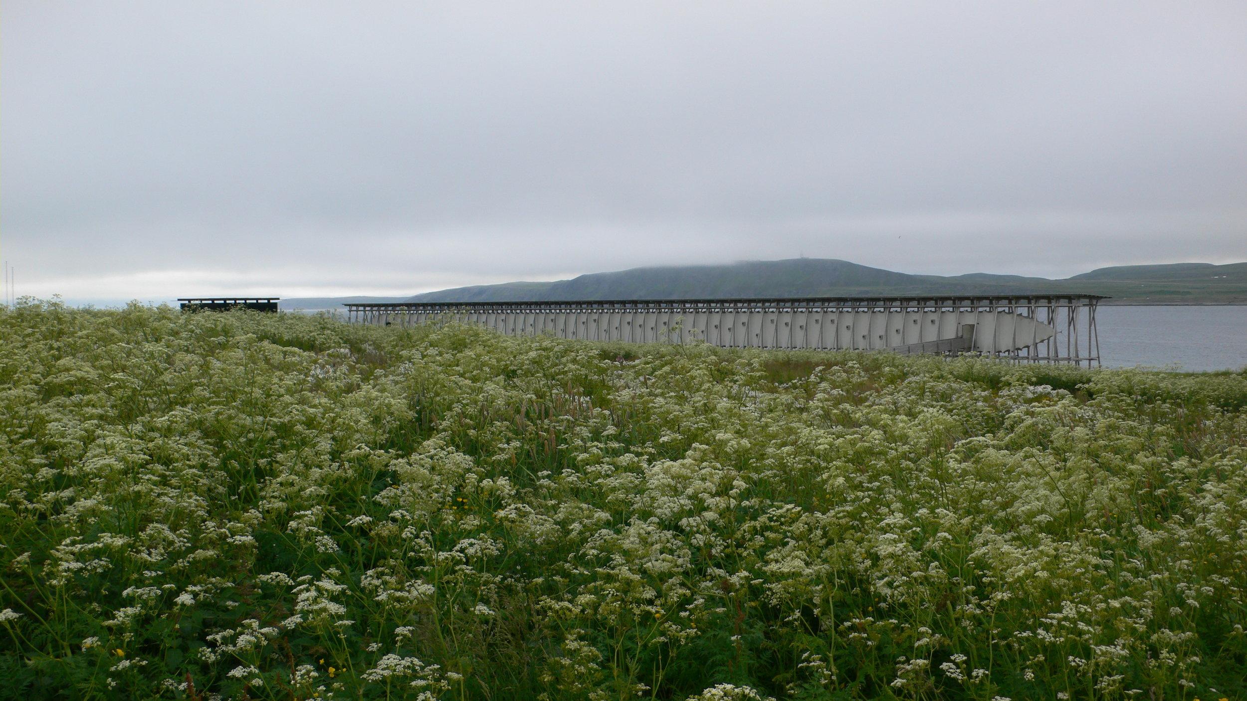 Steilneset Memorial in Vardø, Peter Zumthor.©Susana Ventura,July 2014.