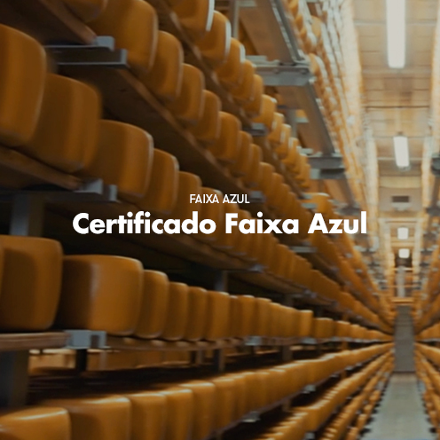 thumbsprojeto_certificado.jpg