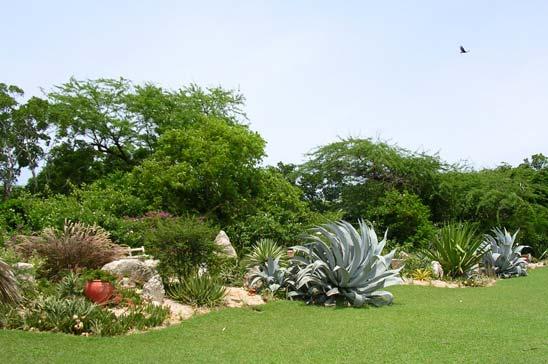 villa_coquina_treasure_beach_jamaica13.jpg