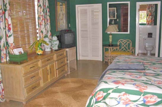 drambuie_estate_montego_bay_jamaica18.jpg