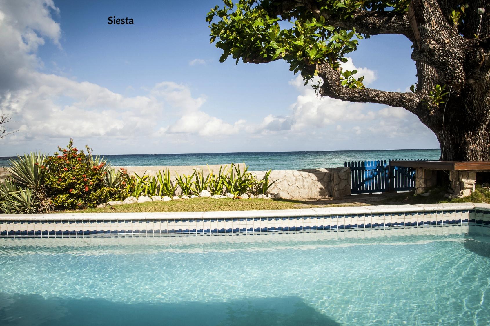Siesta_Runaway_Bay_Jamaica_33.JPG
