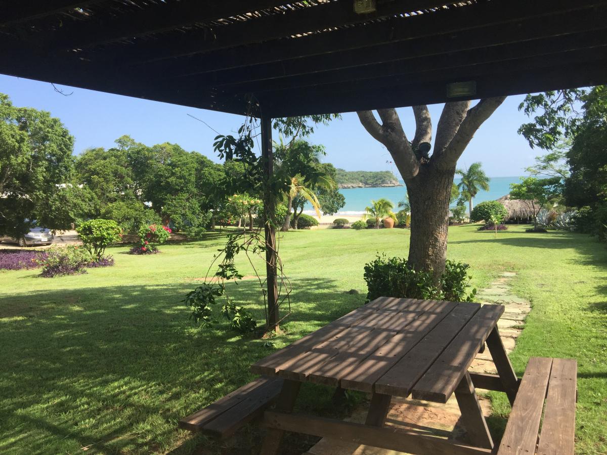 Coquina_Treasure_Beach_Jamaica_07.jpg